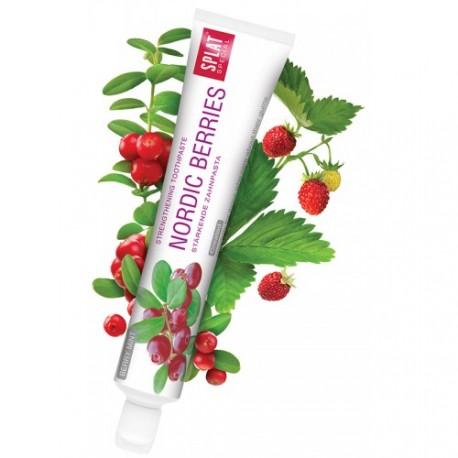 Zubná pasta NORDIC BERRIES, SPLAT SPECIAL, 100ml